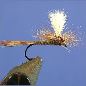 Parachute Adams Dry Fly