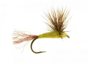 Comparadun with Trailing Shuck Fly Pattern