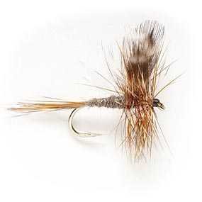 Adams Dry Fly Pattern