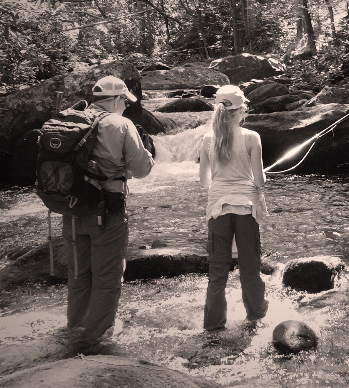 Guided Fly Fishing in the Smoky Mountains