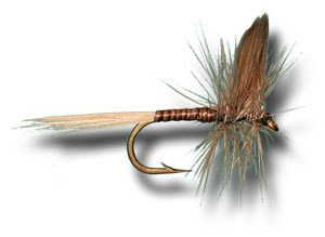 Blue Quill Dry Fly