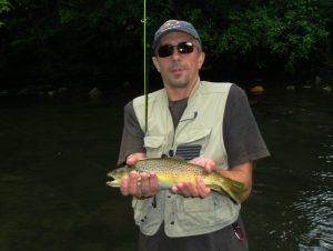 Brown Trout Little River Smoky Mountains