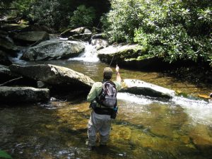 Fishing a Smoky Mountain Brook Trout Stream