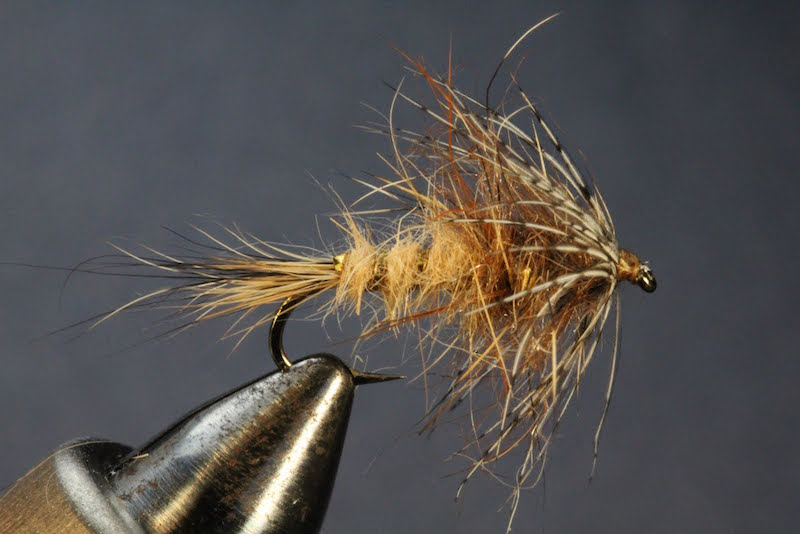 Red Fox Squirrel Nymph Fly Pattern