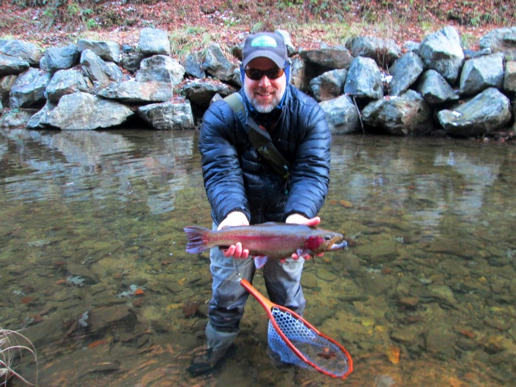 Rainbow trout in the winter