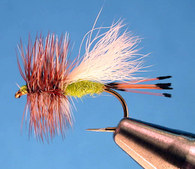 Lime Trude Fly Pattern