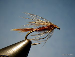 Soft Hackle Pheasant Tail Fly Pattern