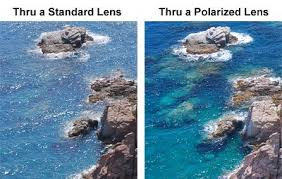 Viewing Water Through a Polarized Lens