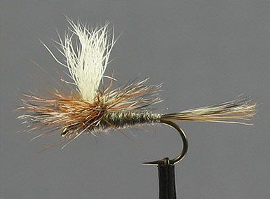 Parachute Adams Fly Pattern